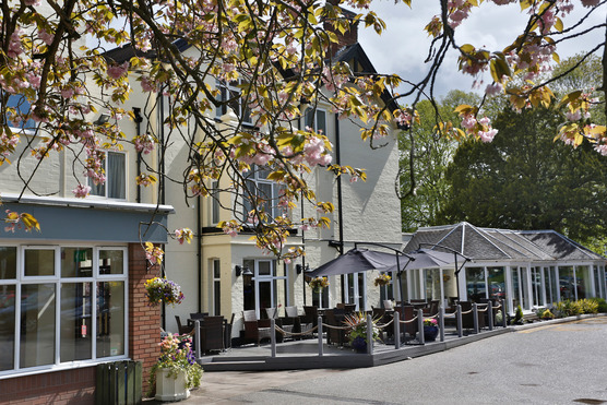 TIllington Hall Hotel building photo with outdoor wooden decking area  for drinks and food, bright sunny day, blossom tree framing the photo