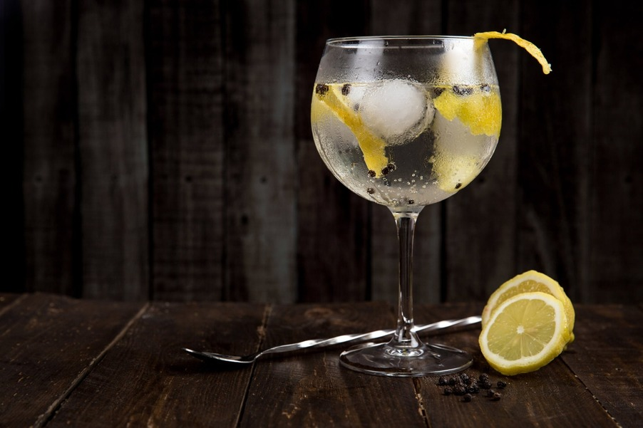 An image of a gin glass on a wooden table, the chalice looks cool and refreshing with slices of lemon, ice-cubes and biotics