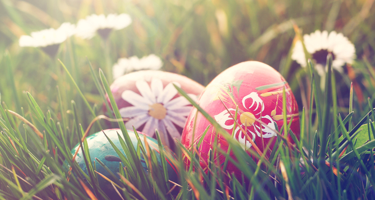 An image of some decorated Easter Eggs with floral patterns and designs sat in a field of long grass, surrounded by daisies and flowers on Easter Sunday